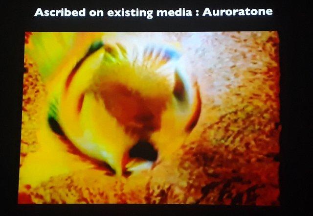 Image 6 Auroratone.jpg